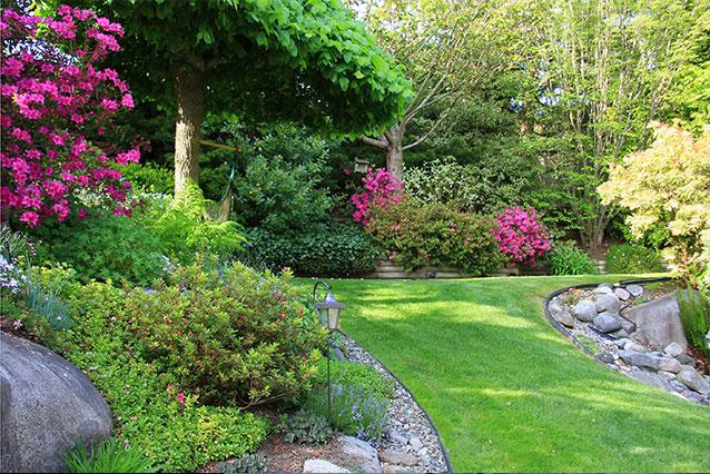 Gartenpflege Naturpool Bepflanzung Hecke Hohenahr