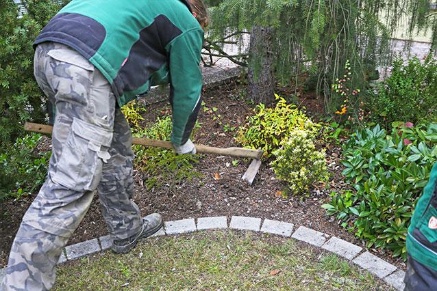 Gartenpflege Baumschnitt Strauchschnitt Düngen Gladenbach